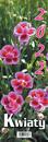 Kp2 Kwiaty