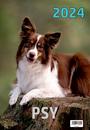 W3 Koty