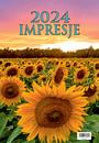 W6 Konie